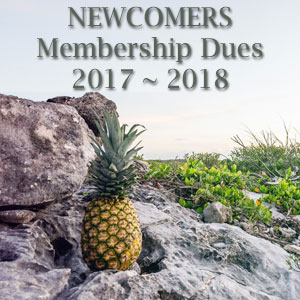 You can pay your dues online by clicking here